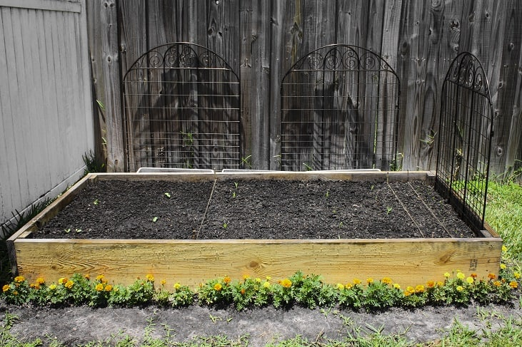 blog post 1 - garden bed