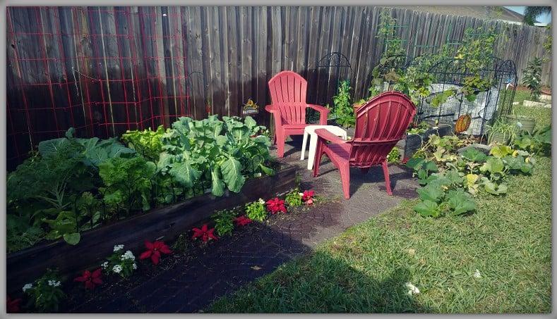 have a big garden