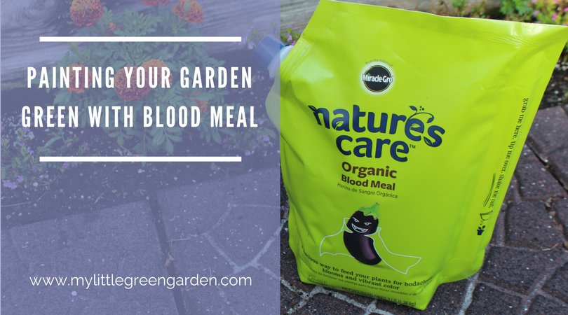 Painting your Garden Green with Blood Meal for Gardening