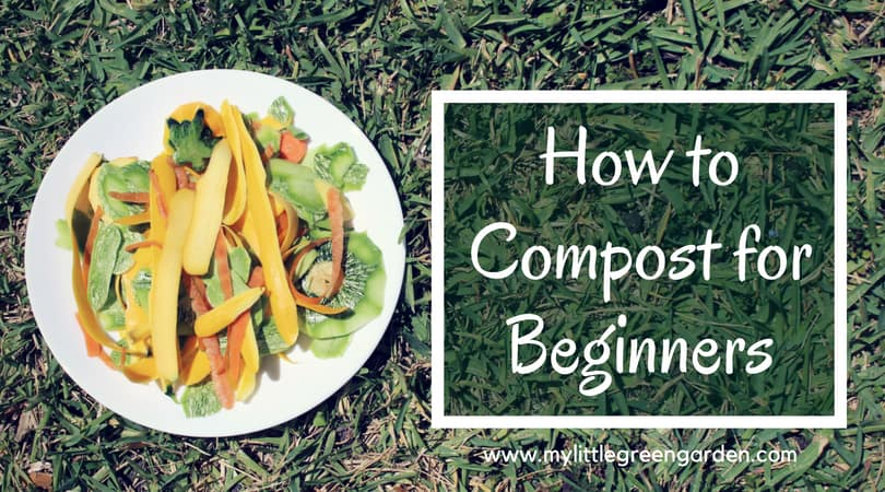 How to Compost for Beginners