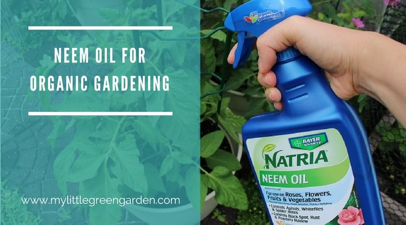 Neem Oil for Organic Gardening and Pest Control