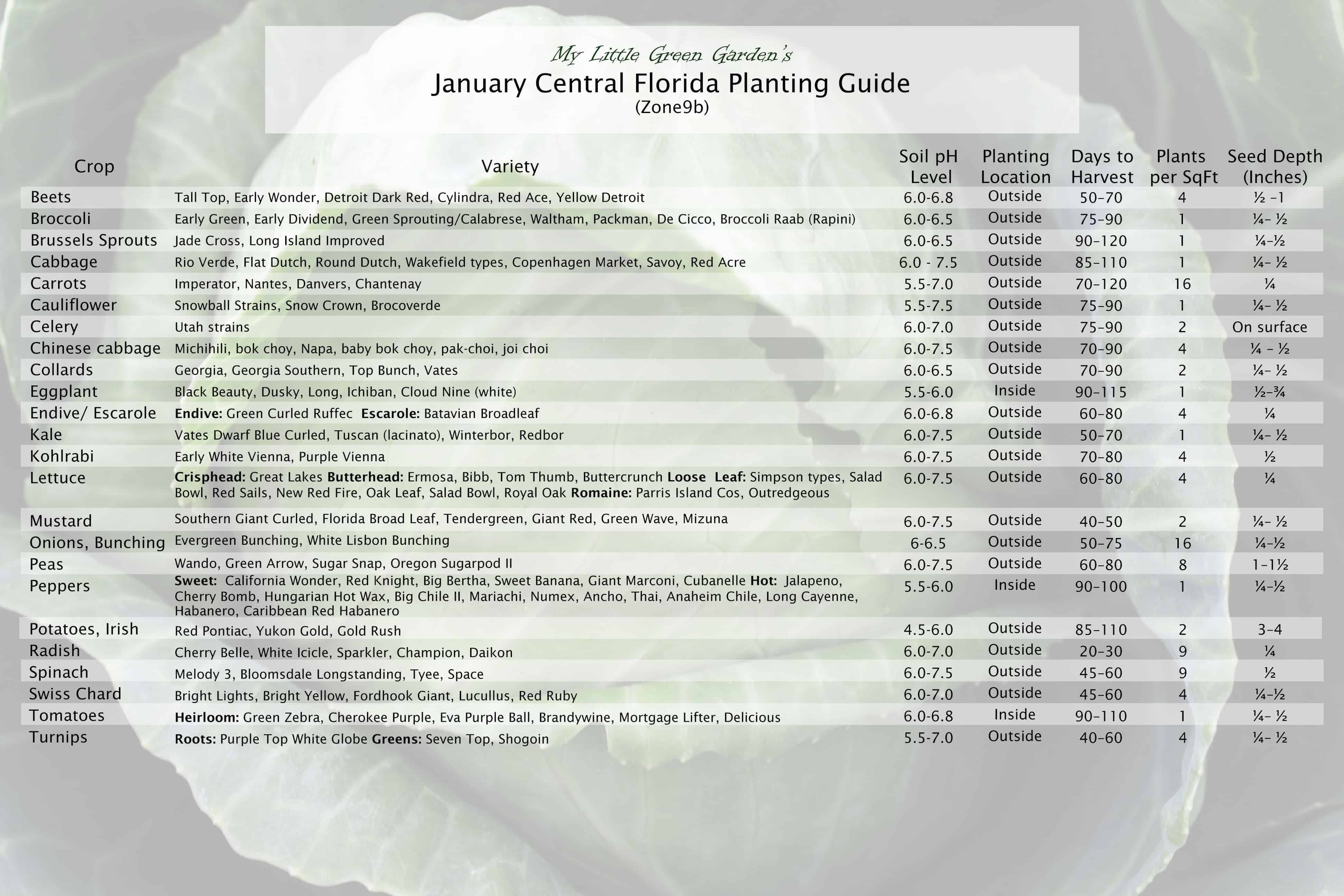 January Vegetable Planting Guide for Central Florida