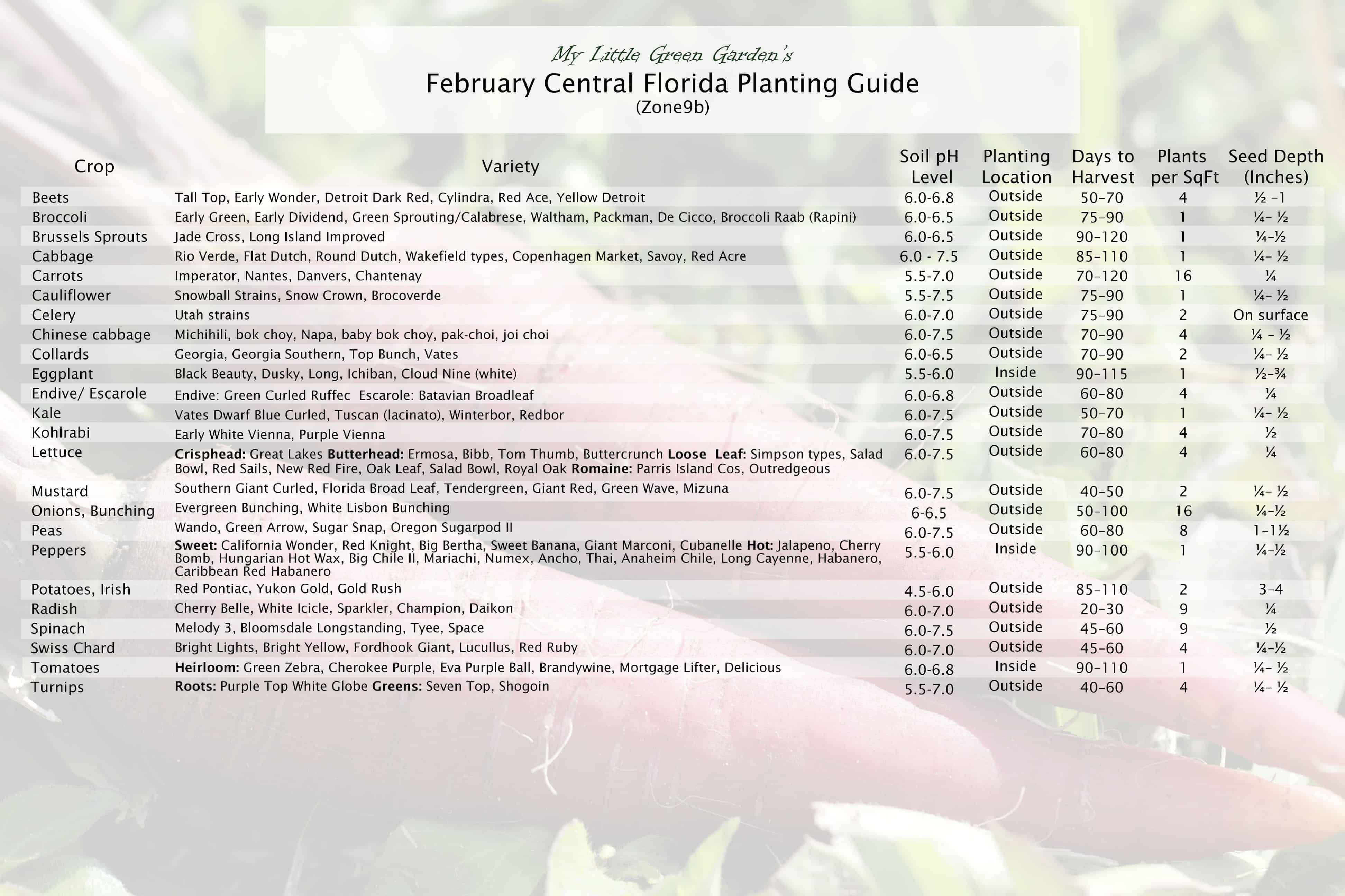 February Vegetable Planting Guide for Central Florida