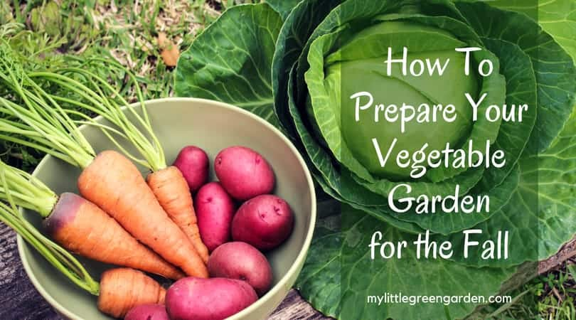 How To Prepare Your Vegetable Garden for the Fall - My Little Green ...