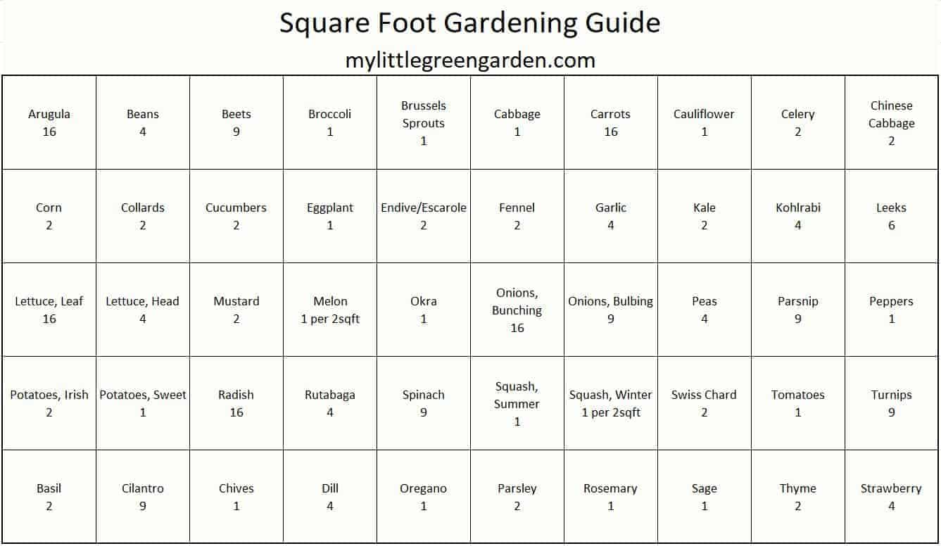 Square Foot Garden Guide