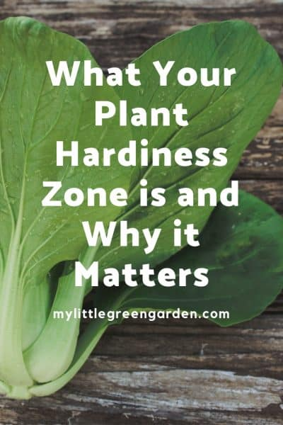 What Your Plant Hardiness Zone is and Why it Matters