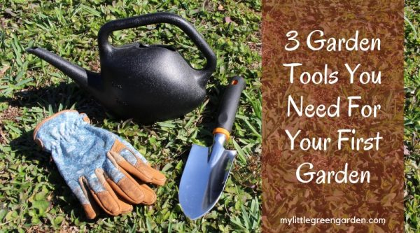 3 Garden Tools You Need For Your First Garden