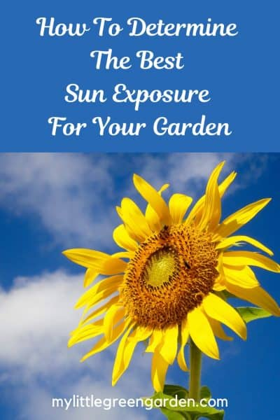 Sun Exposure For Your Garden