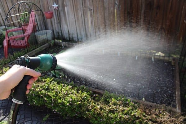 Watering Your Garden in Hot Weather
