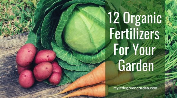 12 Organic Fertilizers For Your Garden