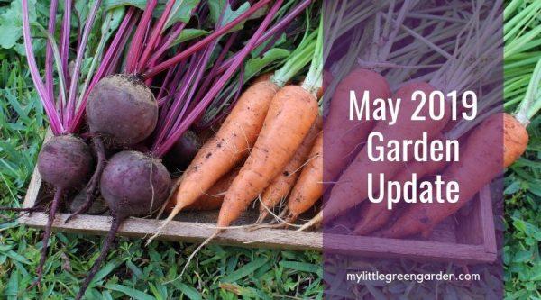 May 2019 Garden Update