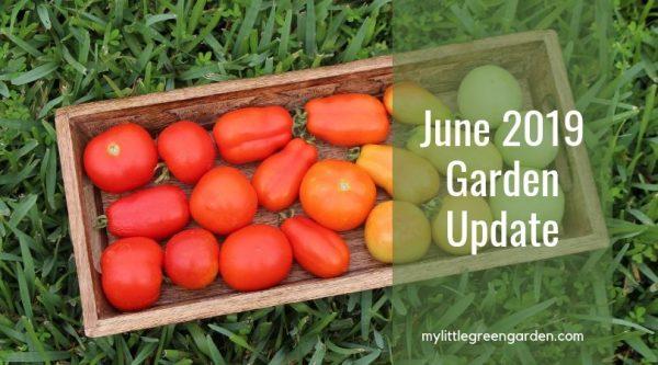 June 2019 Garden Update