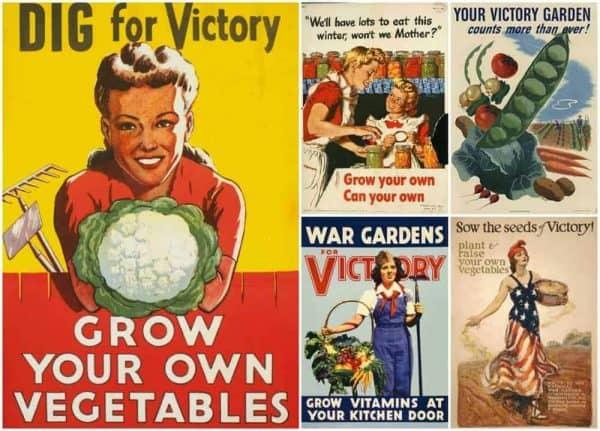 Victory Garden Propaganda WWI