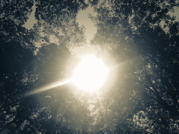 Sunlight for Vitamin D
